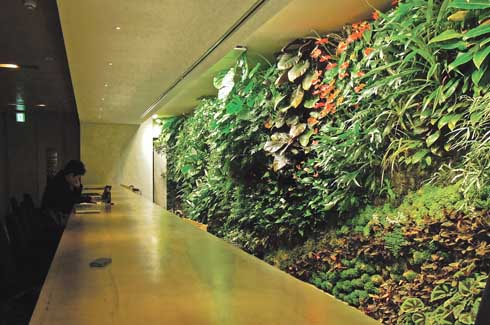 This vertical garden is reputed to be Blanc's largest in Japan. With over 100 types of plants, this wall is the pride of the flagship store of Costume National Aoyama Complex (CNAC), a clothing company.