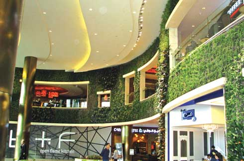 The Vertical Garden in Kuwait's 360 Mall is one of its kind in the country and adds a unique green touch to the atrium area with its cafes and shops.