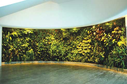 Designed by Marc Newson, the Quantas Lounge incorporates a Vertical Garden to stunning effect. 8,400 plants along 30 meters of the lounge wall make a dramatic entry point to the lounge.