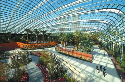 The expansive Flower Dome will take you to the Mediterranean with its palm groves, cacti and lush rows of brightly coloured flowers.