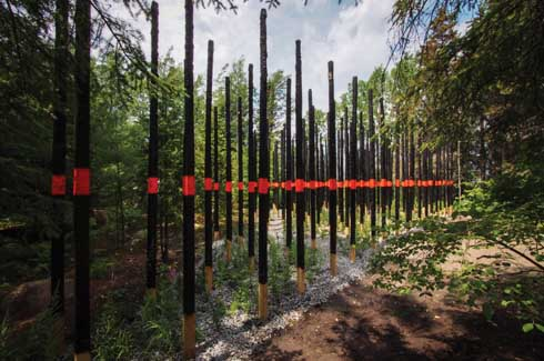 Charred posts with bright bands of orange are reminiscent of a forest fire and what happens after that. Evergreens and saplings sprout out from the ash, reaffirming the forest's life cycle.
