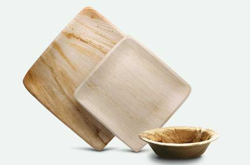 Arecanut sheaths, eco friendly dinnerware, Pattra