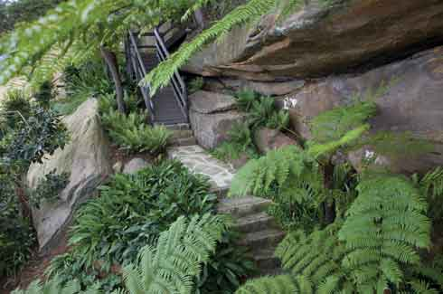 45 degree slope, Secret Gardens, Matthew Cantwell, Seaforth garden, Landscape Association NSW & ACT (LNA).