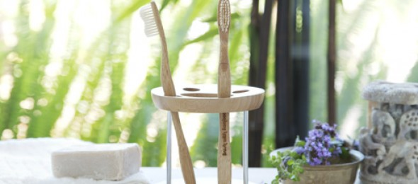 Eco-friendly, Brush With Bamboo, Rohit Kumar, Rohit Sachdev, bamboo brushes.