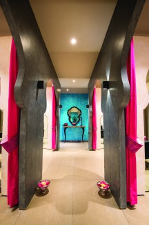 Style n Scissors, Jaipur, Shantanu Garg, art deco, pop art style, spa, salon.