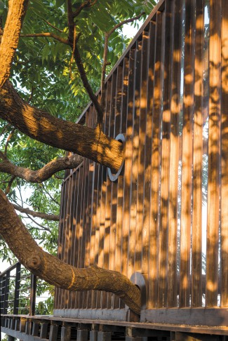 Architecture BRIO, Robert Verrijt, Shefali Balwani and Khushboo Asrani, Mumbai, The Tree Villa, Kuda caves, Polished wood.