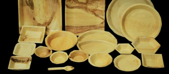 The Boxwood, eco-friendly, biodegradable, food containers, Mr. Malay Shah, palm leaves, disposable Tableware.